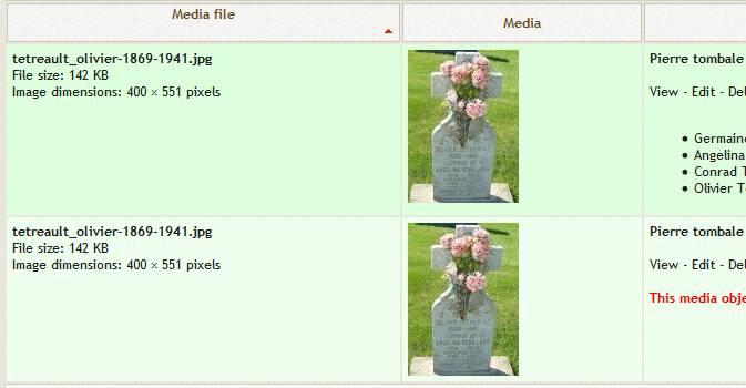 Media-webtrees_issue.jpg